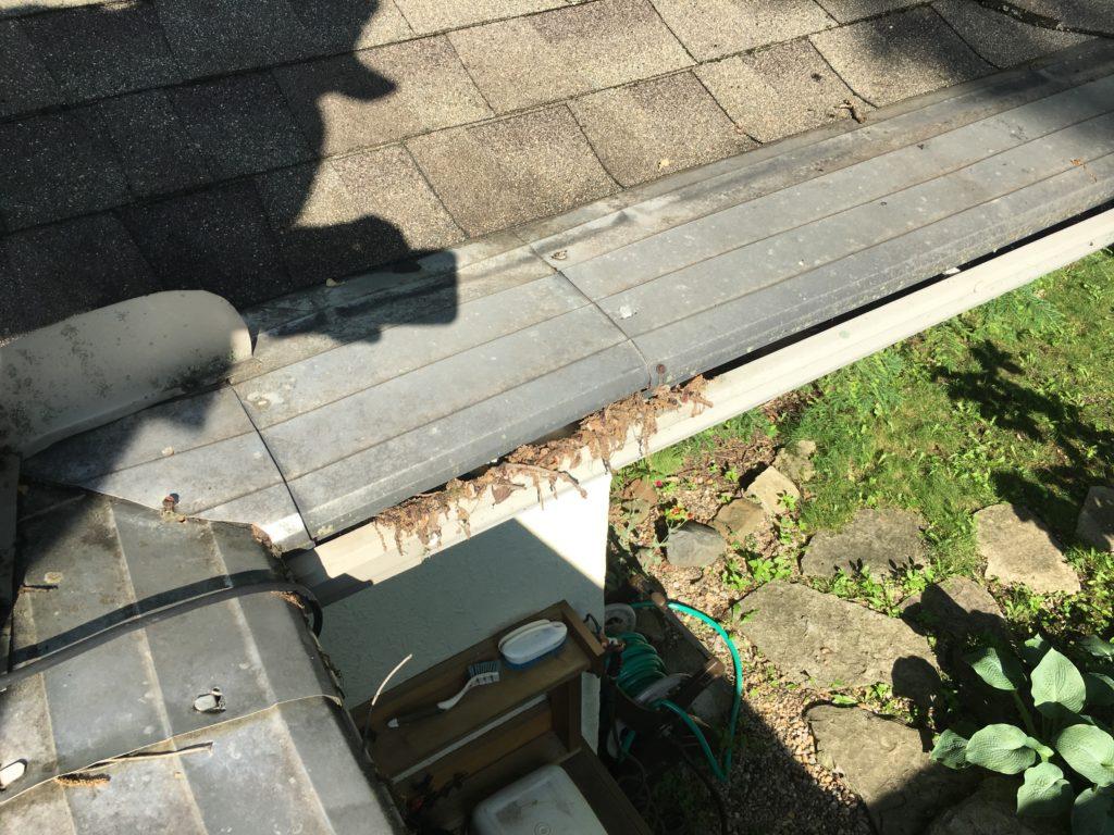 gutter helmet gutter guard with oak tassels lodges in the opening to the gutter