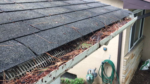 plastic gutters and gutter guards clogged with pine and fir needles